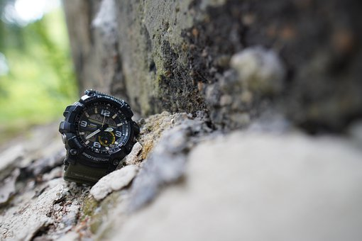 Casio, Forest, A Watch, P, Nature, View