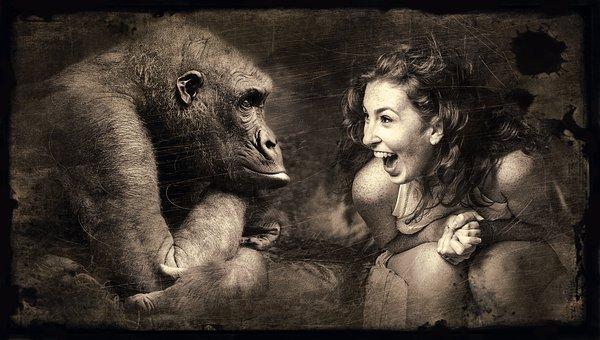 Composing, Monkey, Woman, Laugh, Sepia