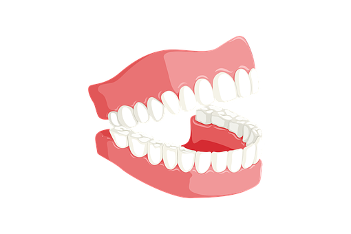 Teeth, Dentist, Mouth, Dentistry, Tooth
